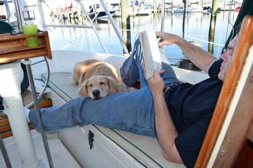 Honey the golden retriever dozes on the boat with Mike.