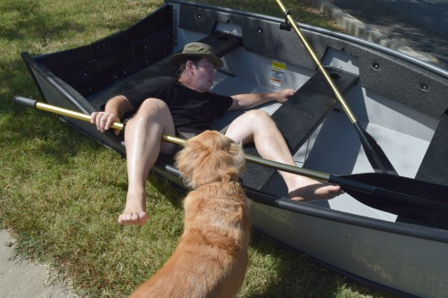 Honey the golden retriever playing with Mike in the dinghy.