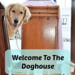 The Boat Tour – Step Inside Our Doghouse