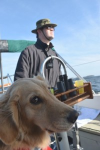 Honey the sailing golden retriever gives the helmsman the side eye.