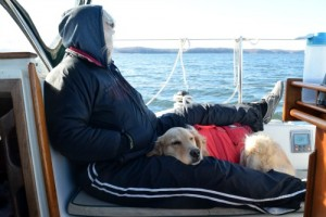 Honey the golden retriever cuddles on the boat on the Chesapeake Bay.