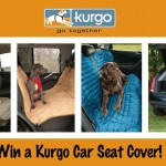 Win Your Very Own Kurgo Car Seat Cover! Giveaway