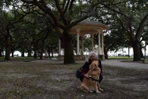 Honey the golden retriever finds shade in Charleston.