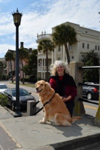Honey casts shade on the Battery in Charleston.