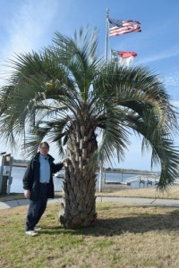 Palmetto in Southport, NC.