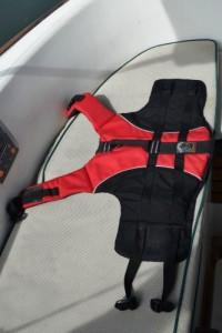 Ruffwear life jacket giveaway.