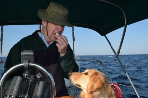 Honey the golden retriever wants a snack in the cockpit.