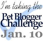 Pet blogger Challenge January 10