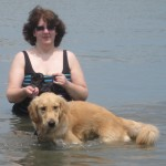 Golden Retriever who doesn't like the water at Cape May.
