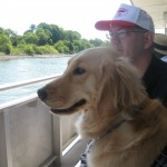 Golden Retriever takes a boat ride