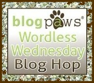 Wordless Wednesday Blog Hop Badge.