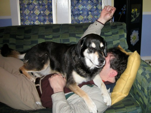 Shadow, our dog, liked to lay down on Mike.