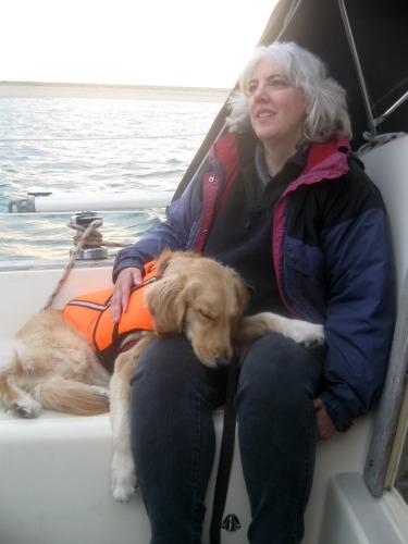 Honey the Golden Retriever is training new sailing skills.