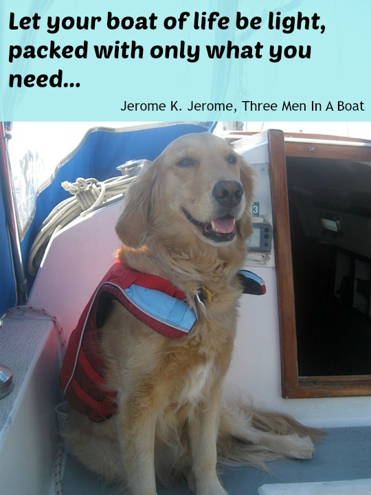 Honey the golden retriever with words of wisdom from Jerome K. Jerome.