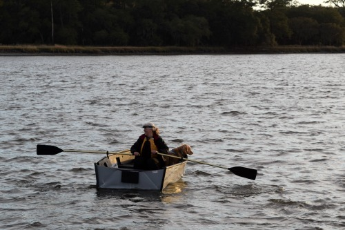 Honey the golden retriever and Pam row to shore in dinghy.