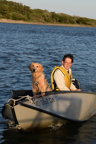 Honey the golden retriever comes back to Meander in a dinghy.