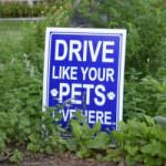 Drive Like Your Pets Live Here