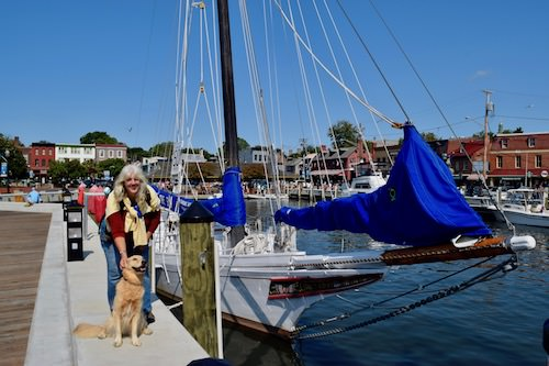 Honey the golden retriever visits Ego Alley before the boat show.