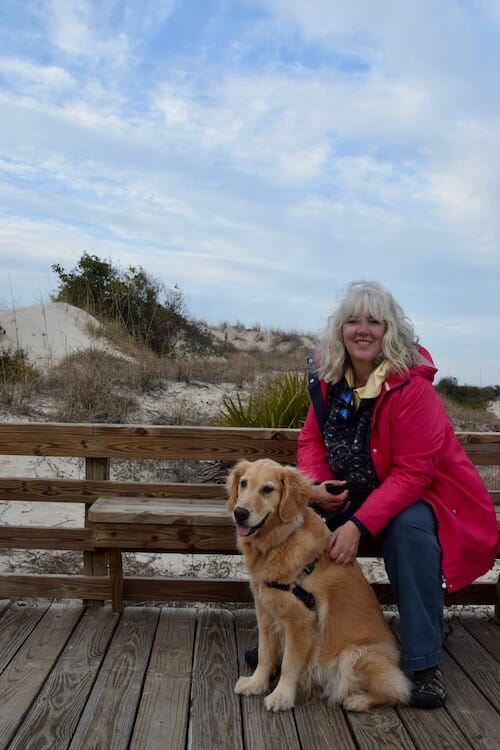 Honey the golden retriever visits dunes at Cumberland National Seashore.