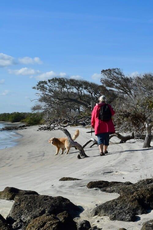 Honey the golden retriever and Pam walk on the beach at Fort Matanzas.