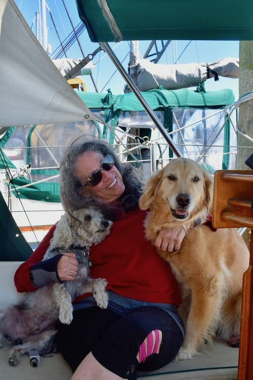 Review of 2018 on Meander (woman with small mixed dog and golden retriever in sailboat cockpit)