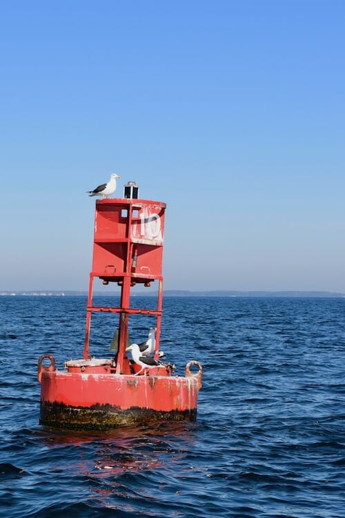 Red buoy number ten.