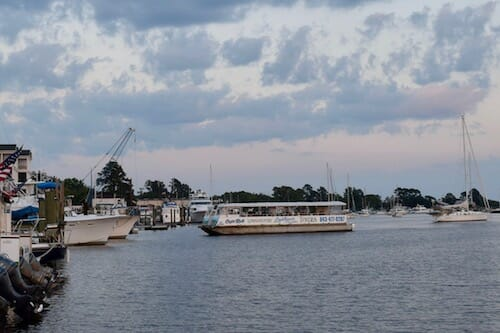 Low country boat tours in Georgetown.