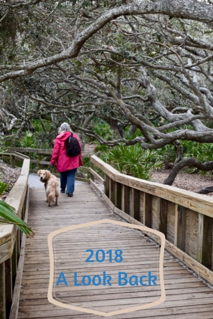A review of 2018 on Meander (girl in pink coat and golden retriever surrounded by live oak trees)