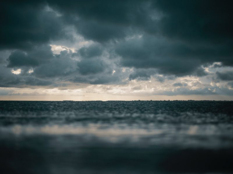 Avoid Dog Disasters in Rough Seas (dark storm clouds over body of water)